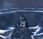 Jarišova voda ajak si ji připravit