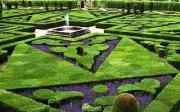 Péče o trávník
