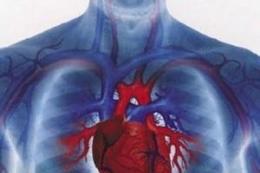 Jak seprojevuje ucpávání cév